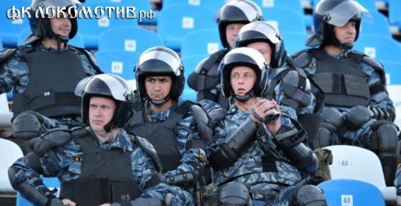 В 2013 году полицейских на стадионах заменят стюарды