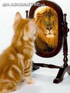 Команда-зеркало