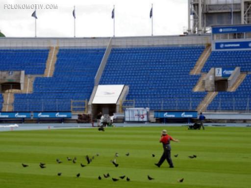…И снится нам трава на стадионах