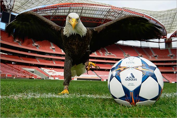 УЕФА представил официальный мяч финала Лиги чемпионов — 2013/14