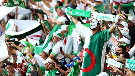 Болельщики Алжира. Фото: © Gettyimages/Fotobank.ru
