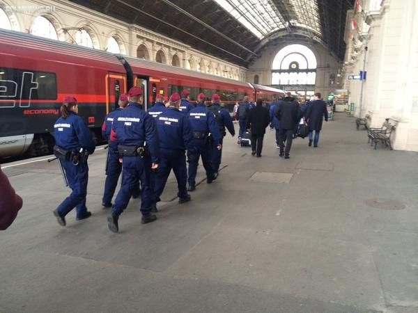 Сборная России прибыла в Будапешт